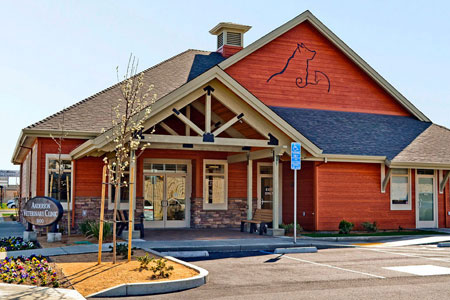 Attractive Veterinary Hospital Exterior