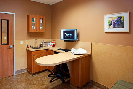 Veterinary hospital exam room