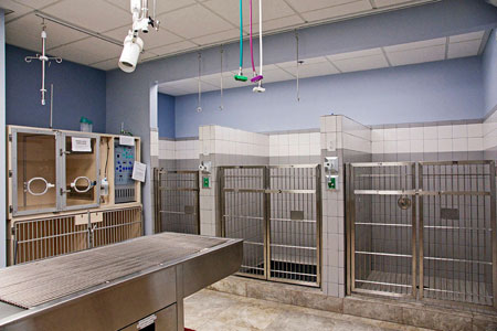 Veterinary hospital runs