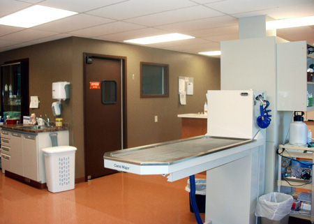 Veterinary hospital treatment room